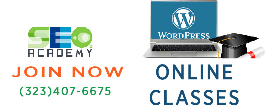 wordpress online classes