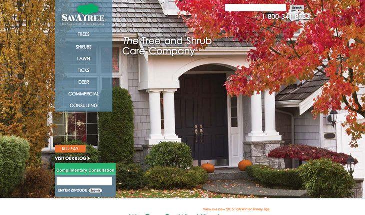 Save tree hace un uso perfecto del verde en los elementos destacados de su web