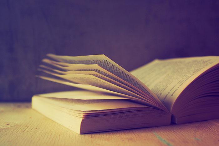 El diccionario es tu amigo, utilízalo
