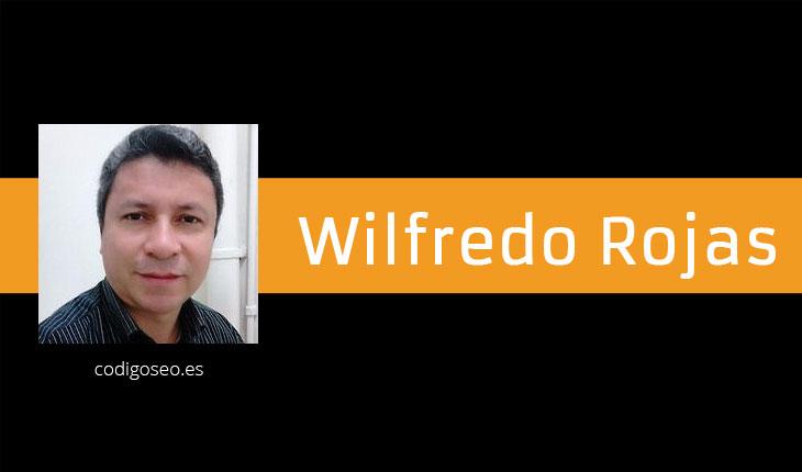 Wilfredo Rojas Rivas - codigoseo.es