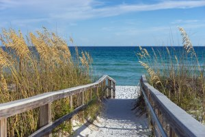Our SEO company is proud to call Boca Raton home - SEO company in Boca Raton