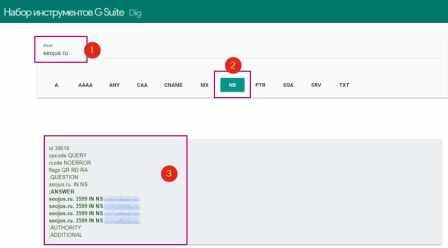 Googleapps проверить DNSдомена