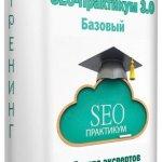 SEO-Практикум 3.0. Базовый (2015) Тренинг