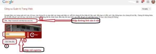 webmaster tool seokool 13 Lý Do Khiến Google Không Index Website Của Bạn