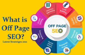 Read more about the article Introduction to Off page SEO | User Guide 2021