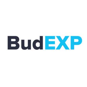 Просування сайту БудЕксп