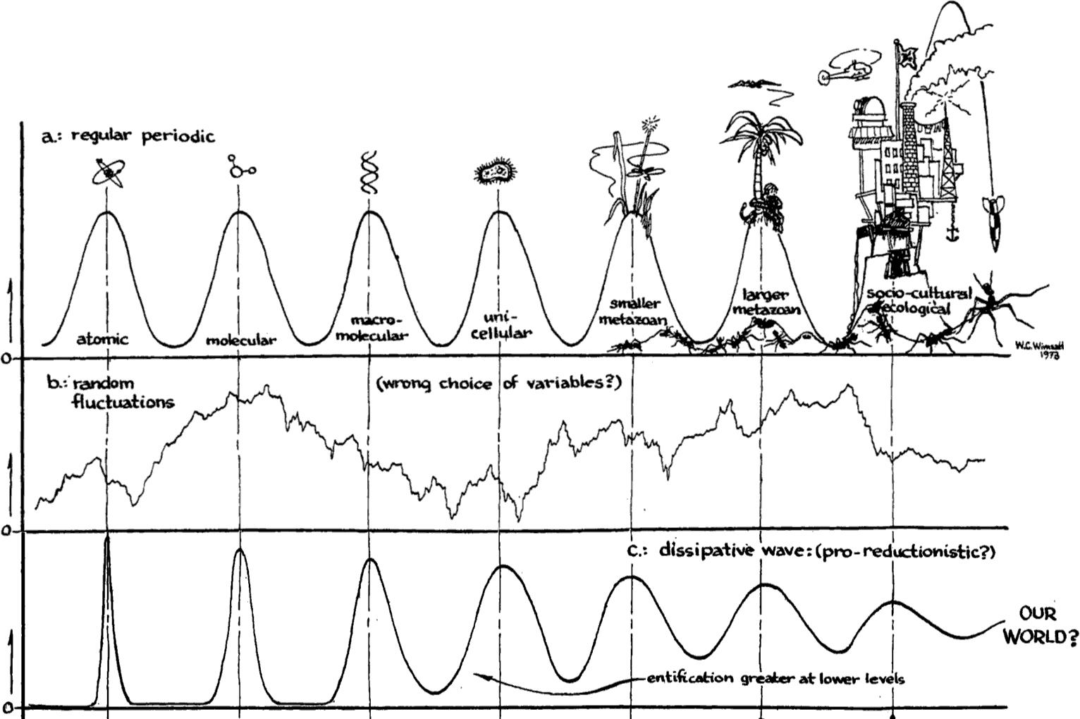 Levels Of Organization In Biology Stanford Encyclopedia