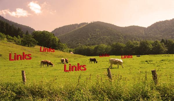 how to do negative seo usually involves link farms