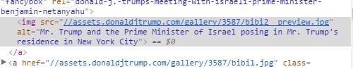 Alt y nombre de fotos en la página Gallery de Trump.
