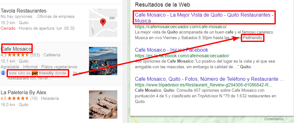 Restaurantes Pet Friendly Y Google Seo Quito Posicionamiento Web