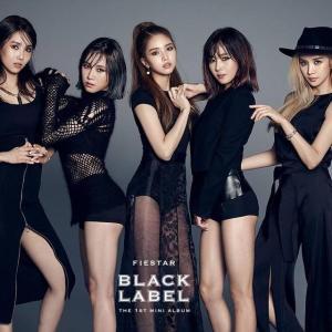 20150313_seoulbeats_fiestar_blacklabel