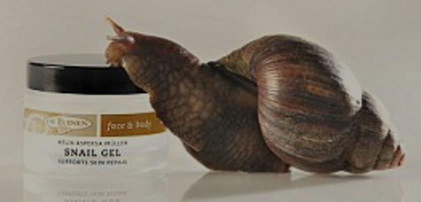 K-Beauty Snail Slime