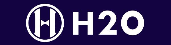 Korean Hospitality Startup H2O
