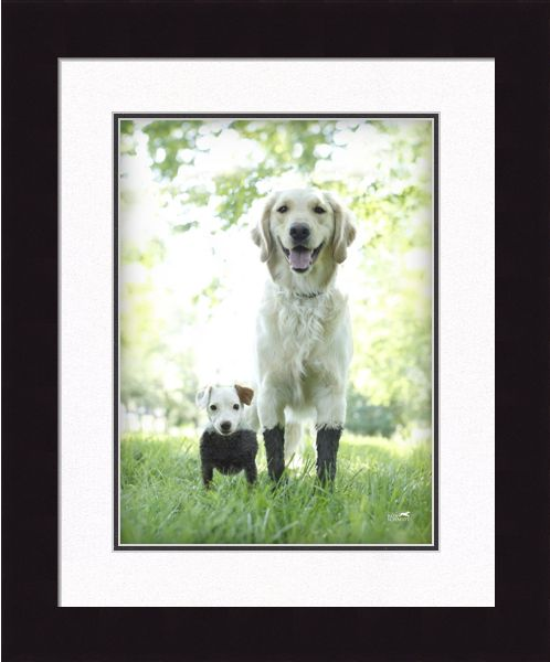 Framed Pictures And Prints Framed Wall Art Decor