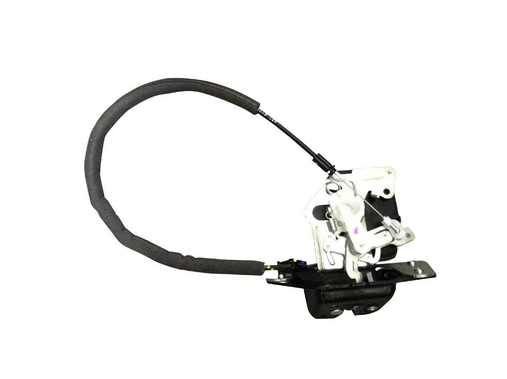 Tailgate Latch With Actuator Motor Ag