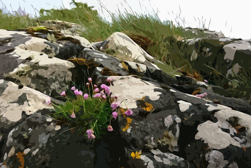 Summer rock colours