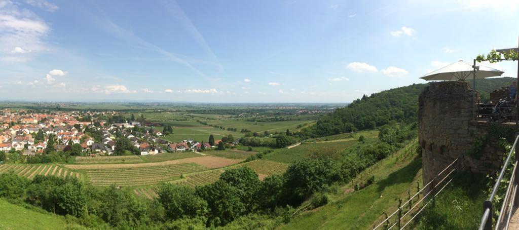 Weinsteig Wachtenburg