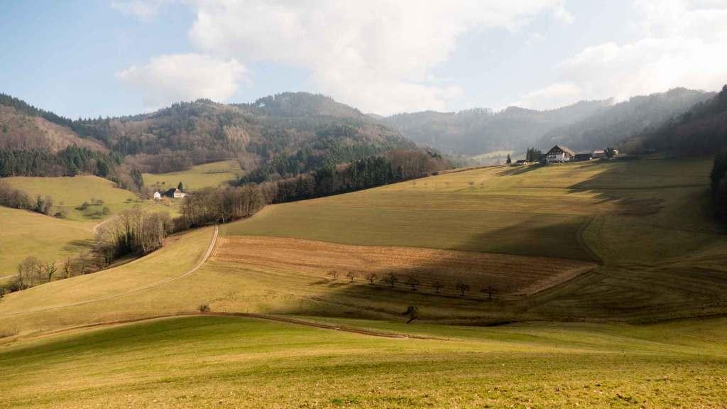 Wandern Schwarzenburg Schwarzwald