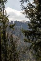 Wieden Belchen Schwarzwald