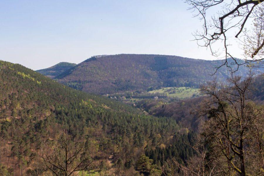 Elsaß Niedersteinbach Wengelsbach 4