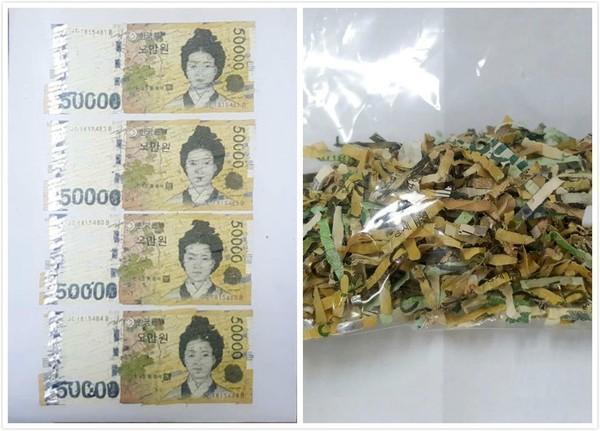 韩国女子惨将55万韩元公款放进碎纸机 1个月后神还原95%惊呆领导!