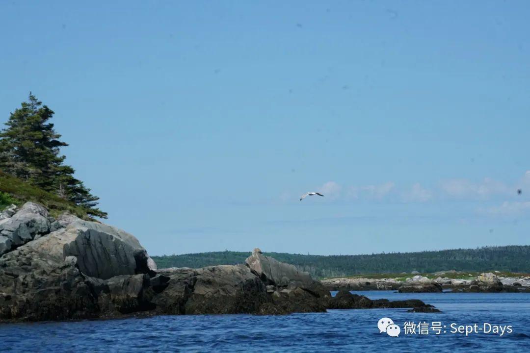 荒岛不凉,有海水与蓝天作伴