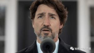 疫情中的加拿大老人福利全解析