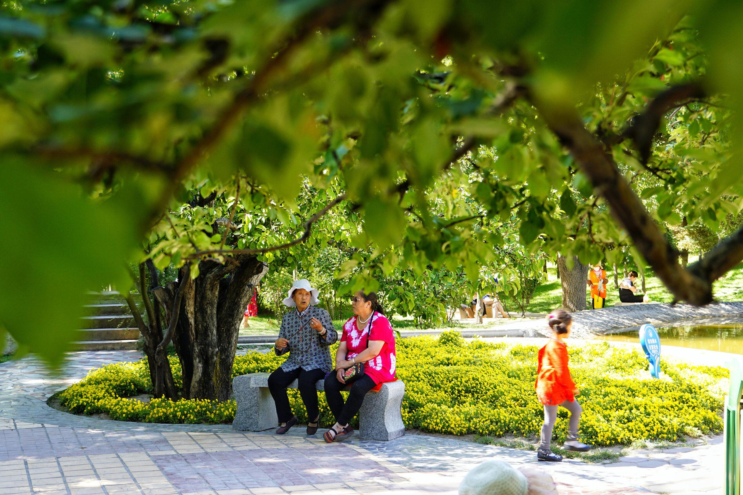西宁:一座四季常绿的花园城市