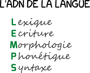 Illustration de l'ADN de la langue.