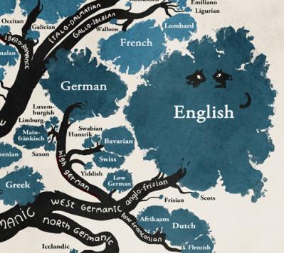 Place de l'anglais sur un arbre phylogénétique
