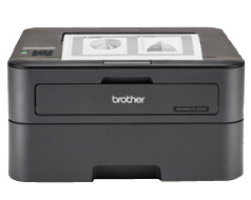 Printer Brother HL-L2360DN