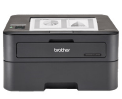 Printer Brother HL-L2365DW