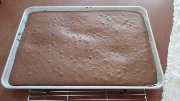 The sponge cake, fresh out of the oven