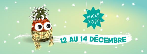 Puces-POP-Hiver-2014-595x220.jpg