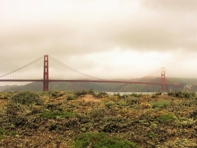 Golden Gate Bridge field flowers