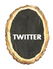 twitter wood sliver