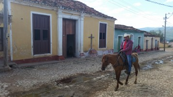 horses are commonplace throughout Cuba!