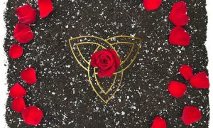 image: red rose in the middle of a triquetra surrounded by rose petals on dark soil