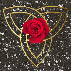 red rose in the center of a triquetra