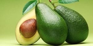 manfaat-biji-alpukat-sembuhkan-penyakit-diabetes