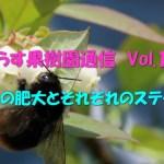 せらす果樹園通信 Vol.17 幼果の肥大とそれぞれのステージ