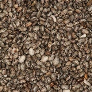 jual black chia seed organik online