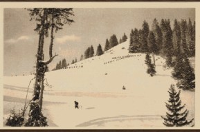 Повлачење преко Чакора 1915