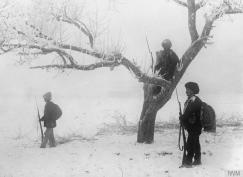 Трупе српске треће армије осматрају током повлачења кроз Албанију (1915)