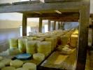Сада се то може купити само у млекарској школи у Пироту и на фарми код Лилића у Добром Долу