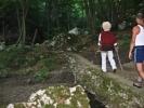 Одводи нас у шуму крај Паскове реке