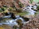 шушкајући кроз лишће до метра дубине