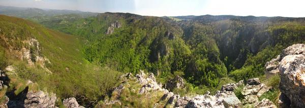 Соколарица, изнад кањона Раче