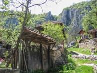 село Власи
