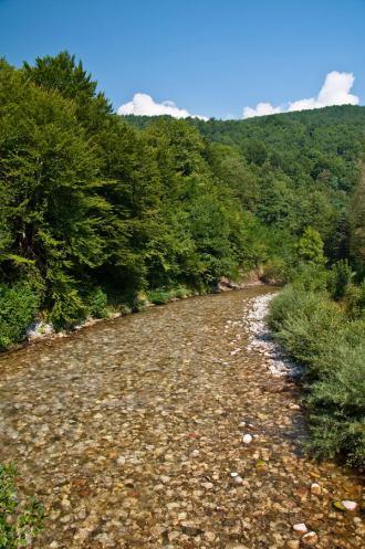 Река Сутјеска (Фото: Александар Вељковић)